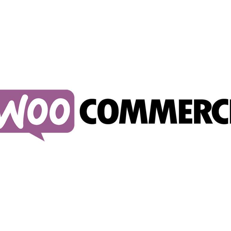 WooCommerce API Manager Plugin