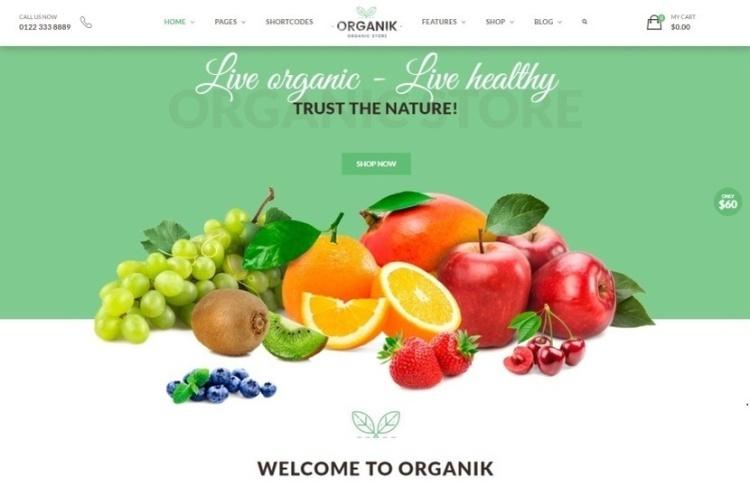 Organizv 1.8 - WooCommerce Organic Products Store