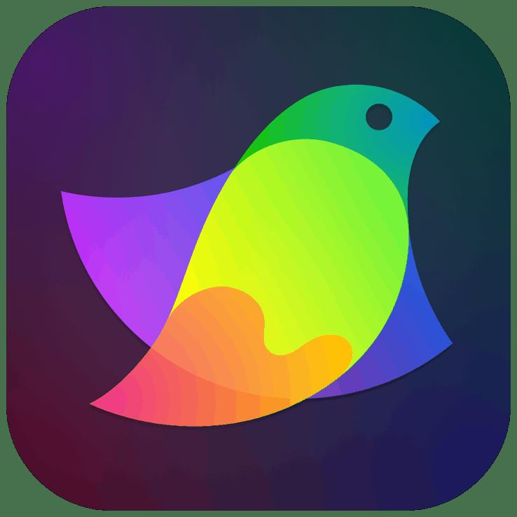 Amadine – Vector graphics design