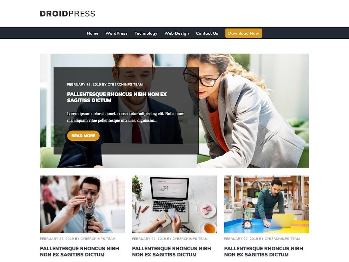 CyberChimps DroidPress