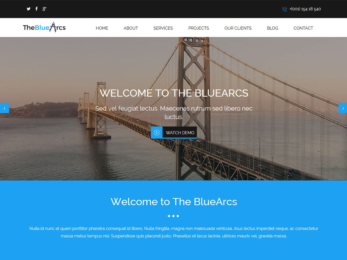 CyberChimps The BlueArcs
