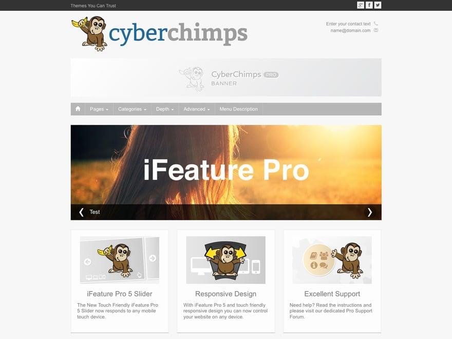 CyberChimps iFeature Pro 5