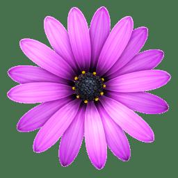 TextMate – Powerful and customizable text editor 2.0.15